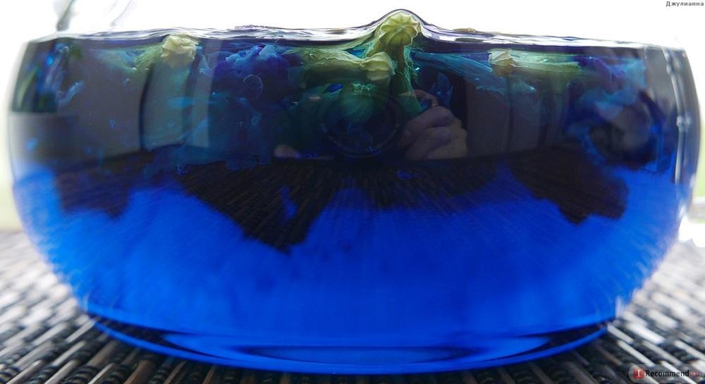 цвет заварки синего чая